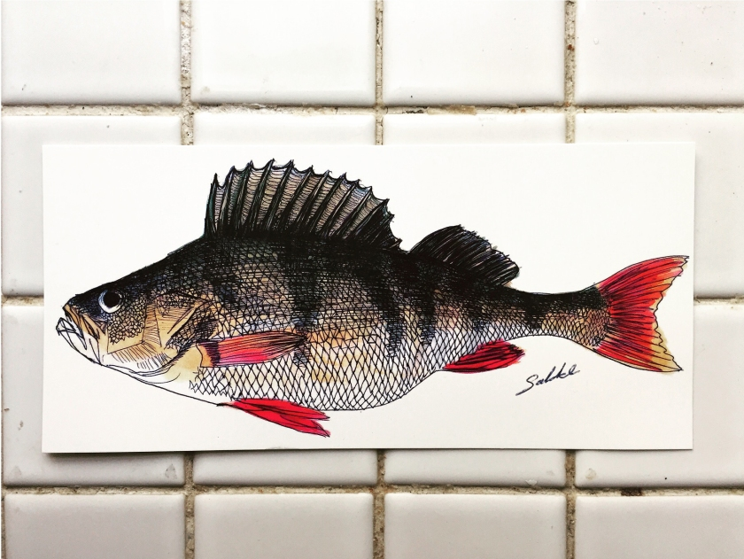 Fish_postcard
