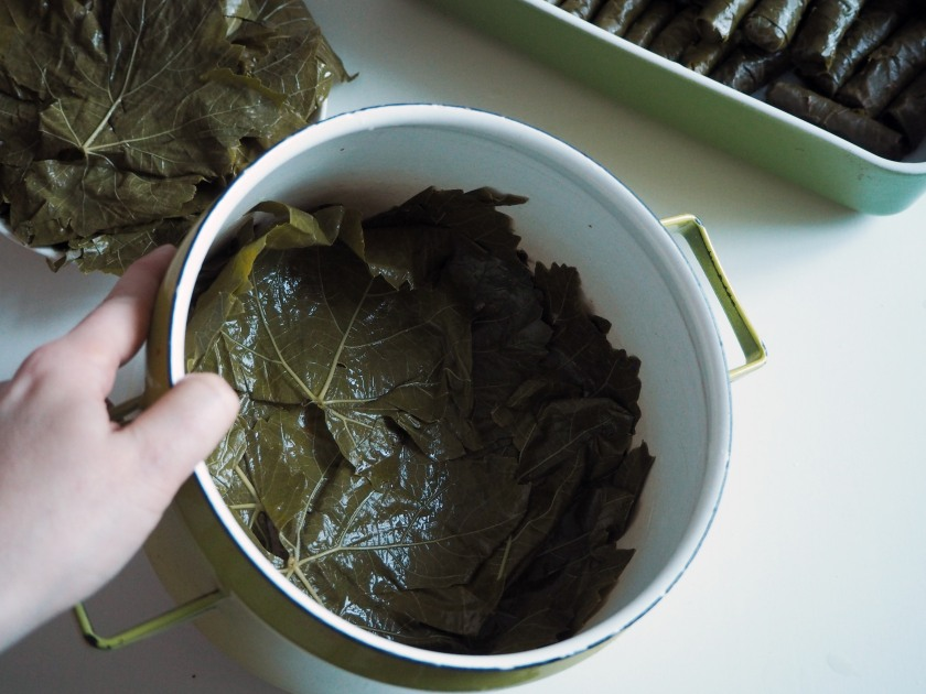 Vine leaf rolls